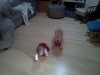 wpid-IMG_20110302_0945281