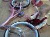 wpid-IMG_20110302_1008371
